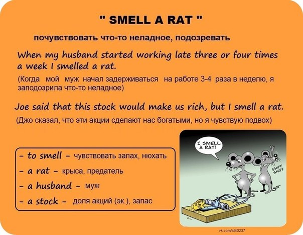 Idiom smell a rat