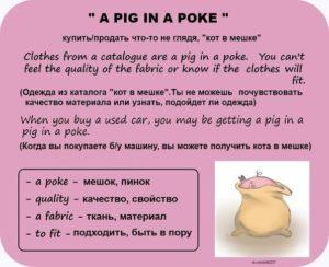 a pig an a poke