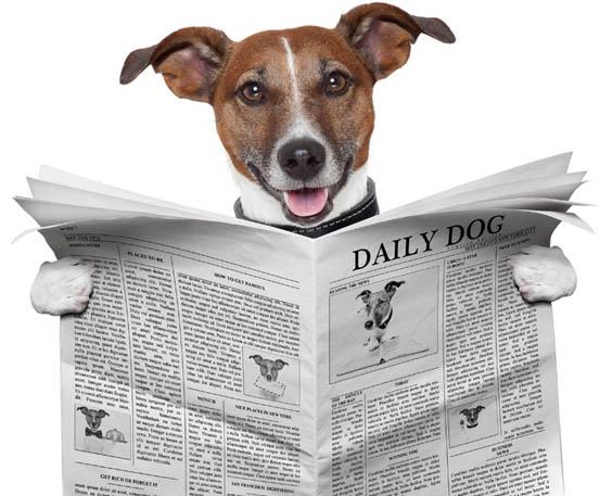 Где почитать новости на английском